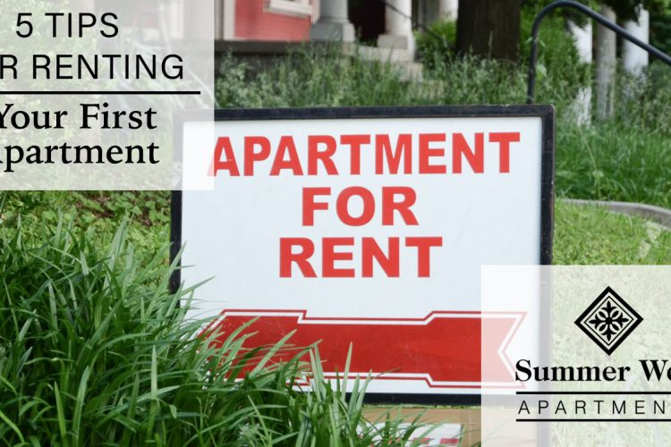 5 Tips for Renting Your First Apartment