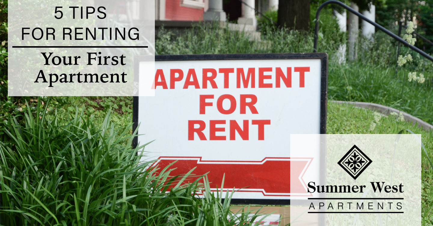 tips for renting your first apartment