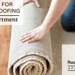 soundproofing your apartment
