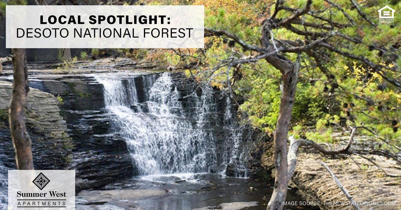 DeSoto National Forest