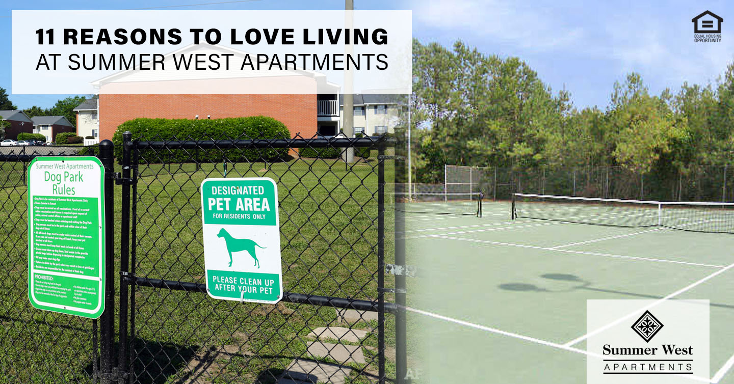 11 Reasons to Love Living at Summer West Apartments