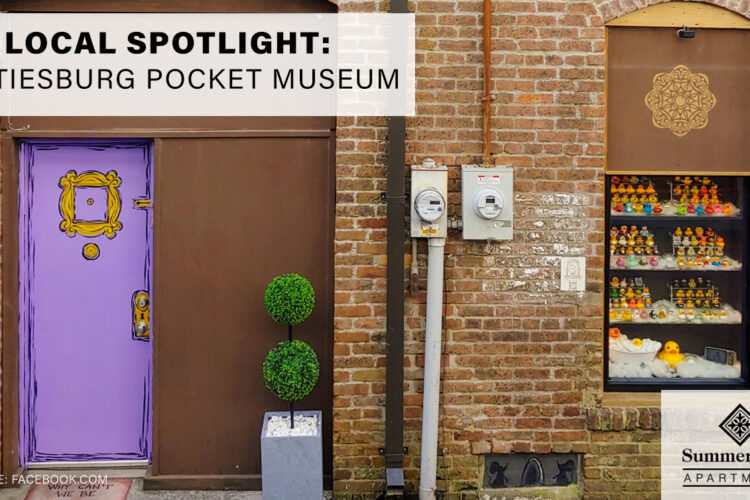 Local Spotlight: Hattiesburg Pocket Museum