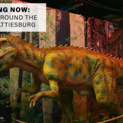 Dinosaurs Around the World in Hattiesburg