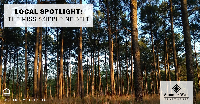 Local Spotlight: The Mississippi Pine Belt