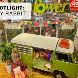 The Lucky Rabbit